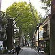 雑司ヶ谷鬼子母神02