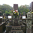 41_南洲墓地と南洲神社