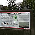 49_南洲墓地と南洲神社