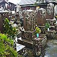 51_南洲墓地と南洲神社