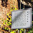 01_勝安房邸跡