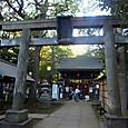 20_赤坂氷川神社2
