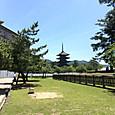 32_興福寺_北円堂からの五重塔