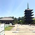 33_興福寺_中門跡からの五重塔